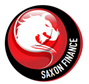 Finance logo S